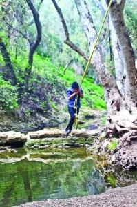 Liberal arts major Jose Guillen, 21, swings away during a hike at Walnut Creek in San Dimas.
