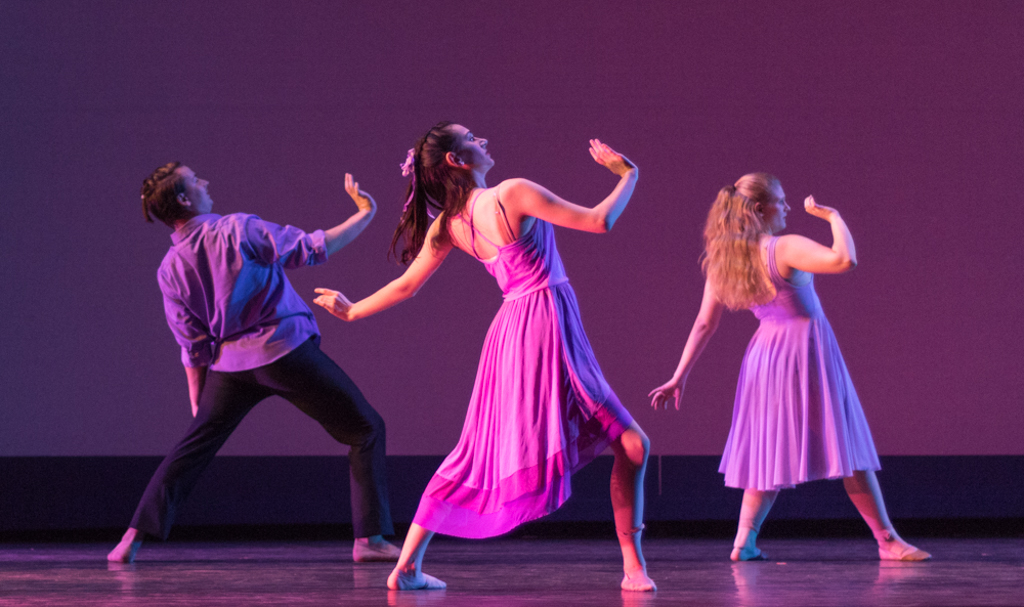 fall 2014 dance concert critique Fall dance concert that will premiere in the virginia wadsworth wirtz center for the performing arts nov 9 jane recker , assistant a&e editor november 8, 2017.
